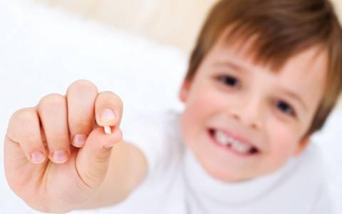 dente-de-leite2